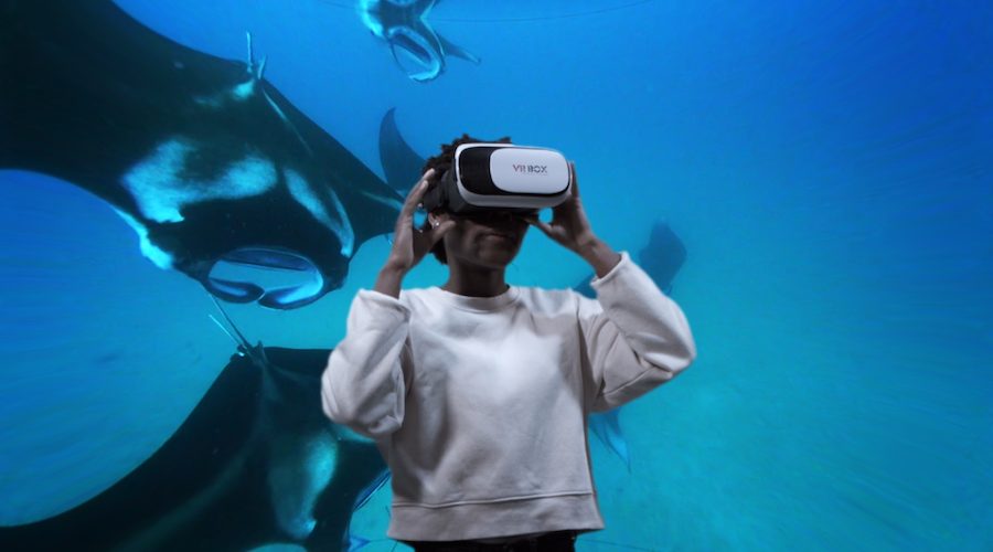 video VR 360 sott'acqua